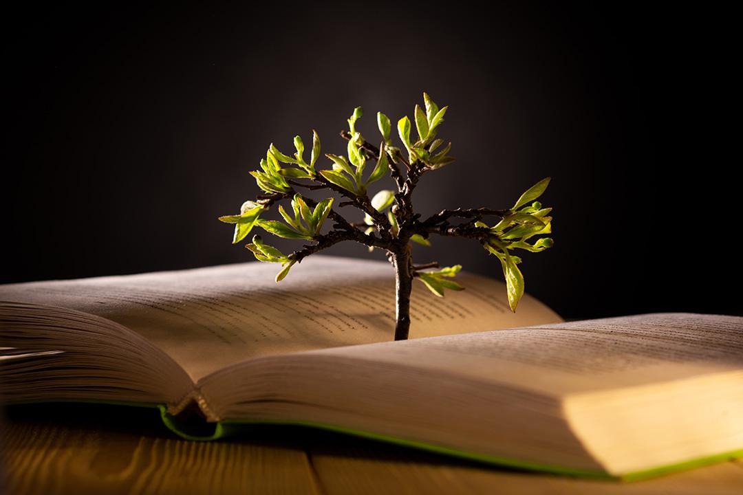 Celebra el Día Internacional del Planeta Tierra con un buen libro. Estos son los más comentados de nuestro catálogo.