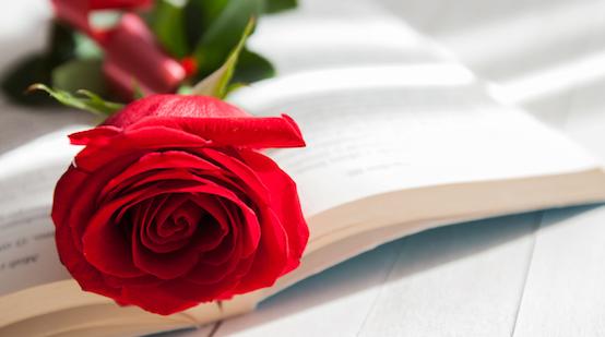 En Editorial Círculo Rojo celebramos el Día del Libro