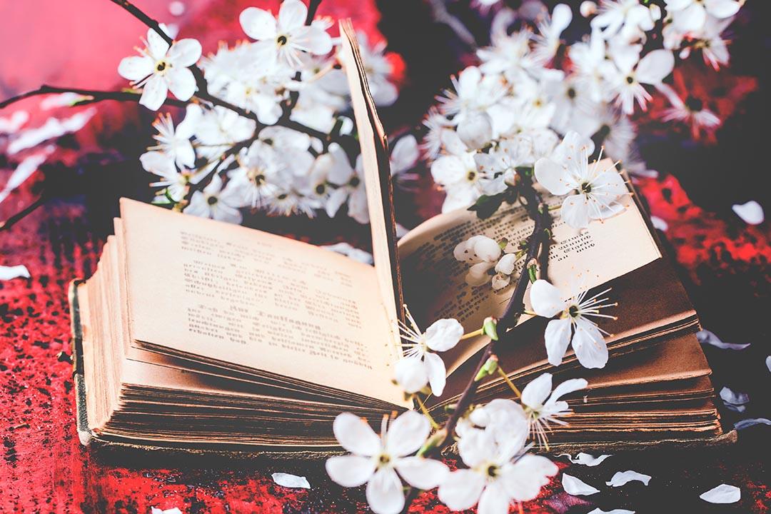 ¿Quieres saber cuáles son los títulos de poesía más comentados de nuestro catálogo?